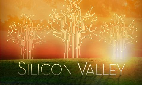 siliconvalley_USA